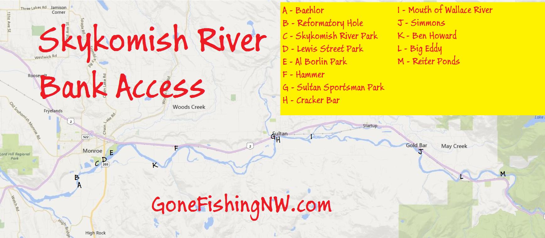 Pink Salmon Skykmoish River Bank Access
